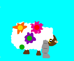 Tropical Sheep