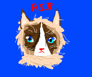 Rest in Peace Grumpy Cat