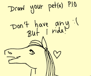 Draw your pet!  PIO