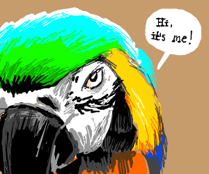 "hello, im ""macaw""?"