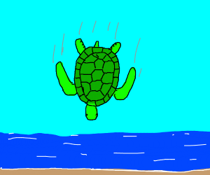 turtle falling to the ground