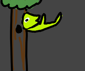 kermit falls from tree