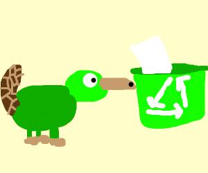 Green platypus is interested in recycling bin