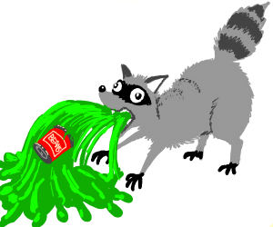 Racoon vomiting up beans