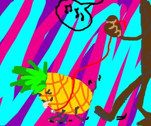 Pet Pineapple
