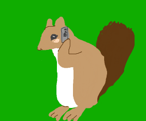 Squirrel with a phone
