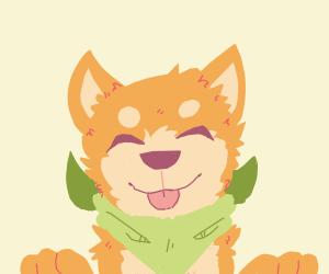 A cute doggo with a green scarf