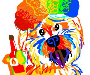 clown dog with hot sauce