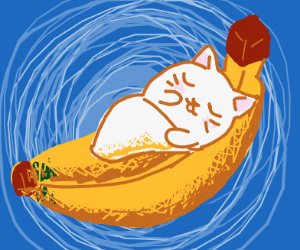 Kitten sleeping in banana peel