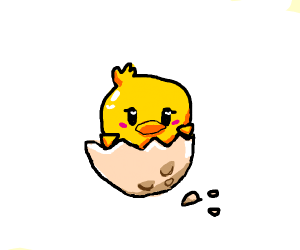 Little chick hatches from an egg