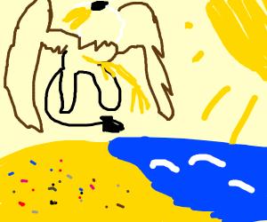Griffin on a Beach
