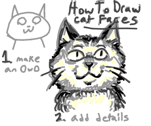 How to draw cat face art tips