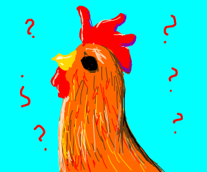 confined rooster (c o c k)