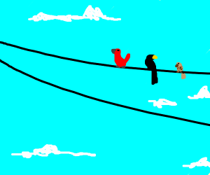 3 Birds sitting on a cable
