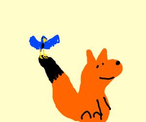 Little bird on Fox's tail