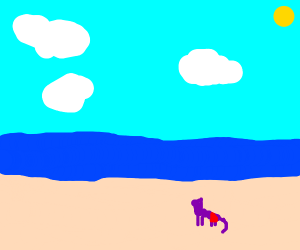 purple cat at beach in a red swimsuit