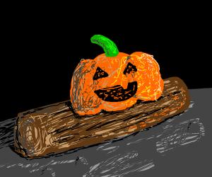 pumpkin on a log