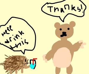 Hedgehog gives bear water
