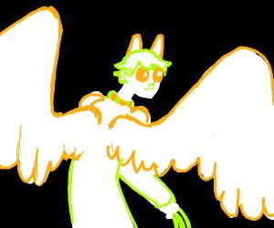 Cat Angel Boy