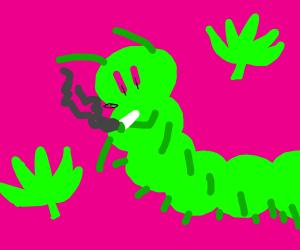 weed caterpillar