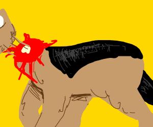 Jackal has been beheaded