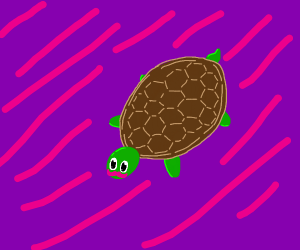 Turtle with pink mustache