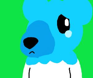 Sad bear with a snot