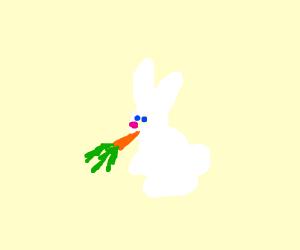 bunny eats carrot