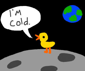 duck is cold on the moon