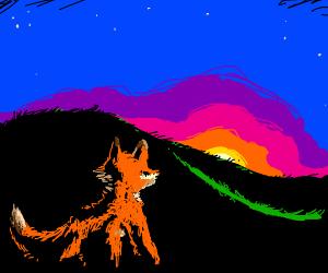 Fox sees Sunset