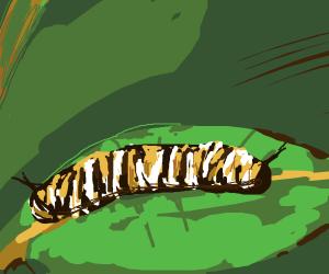 a bugs life Caterpillar
