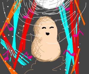 Peanut having a joyful panic at the disco