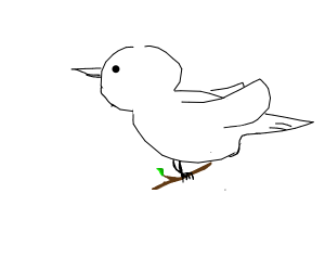 Dove holding a twig