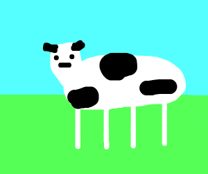cow just cow