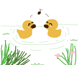 Two ducks singing to eachother