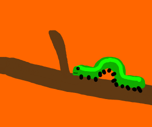li'l green caterpillar