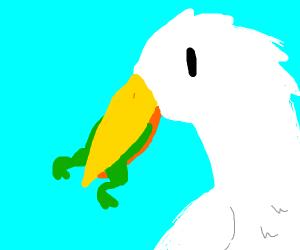 stork eating frogs
