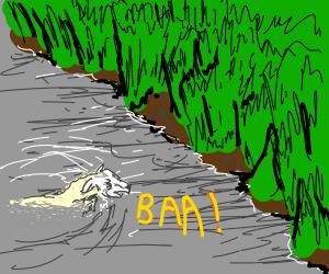 Water Sheep