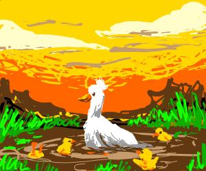 Duck & her ducklings swim in the scum