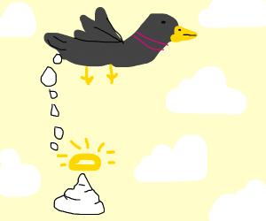 Angelic bird poop