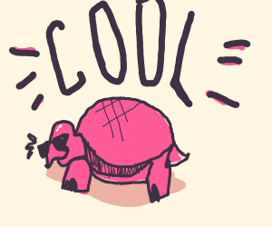 Pink turtle is cool