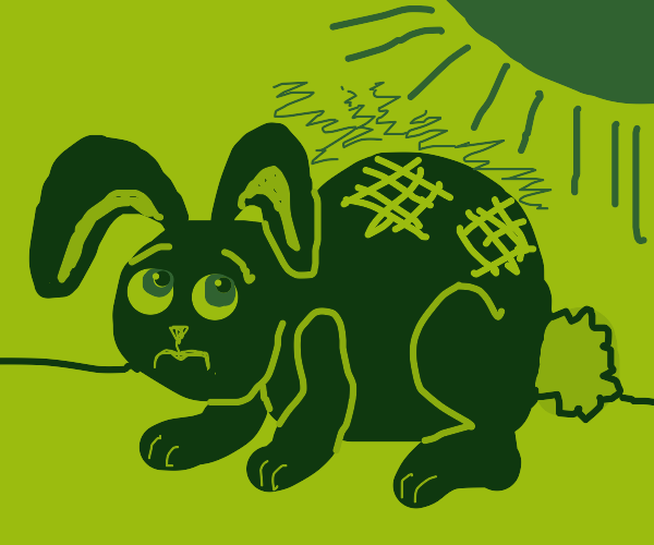 Bunny getting a sunburn