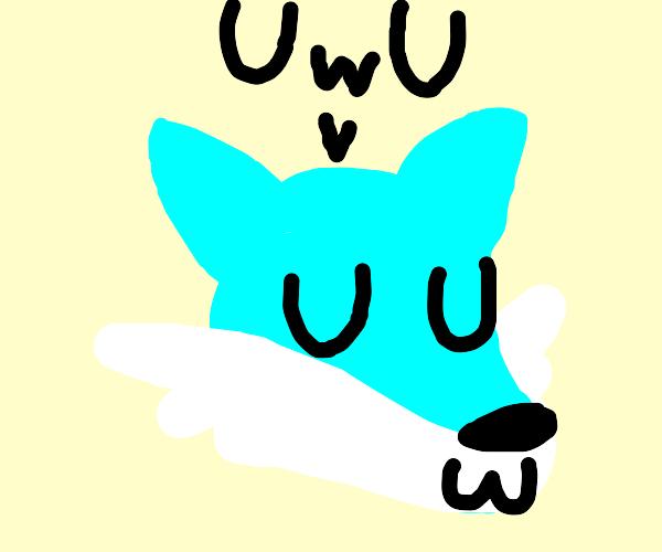 blue canine fursona or fursuit saying uwu