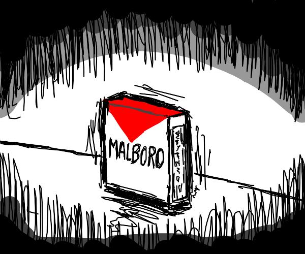 Marlboro Cigs