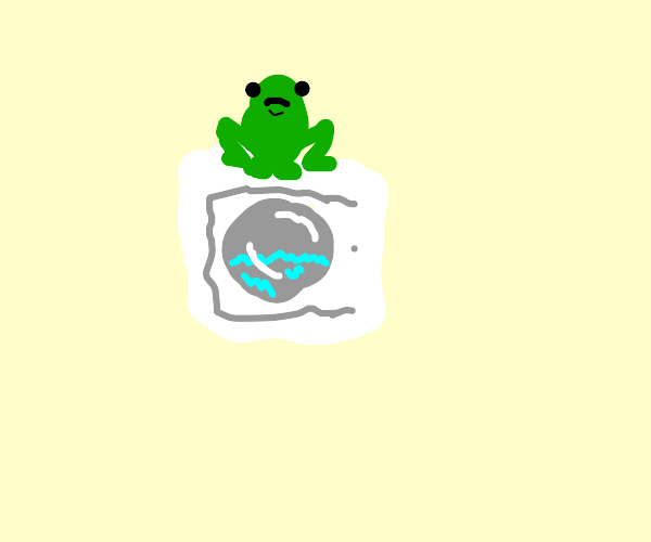 Frog on a washing machine