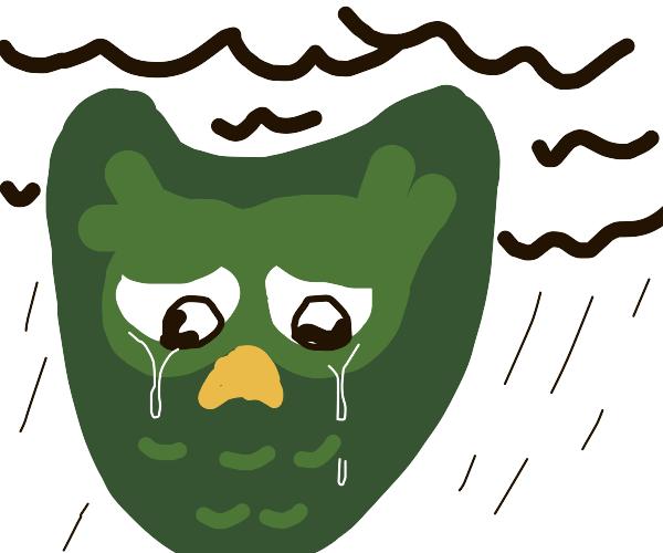 Duo bird is sad