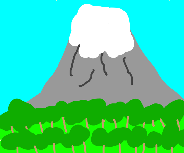 Mountain in the forest