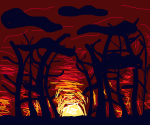 An Ominous Forest on an Ominous Night
