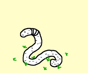 A golf ball worm!