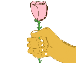 hand holding out rose